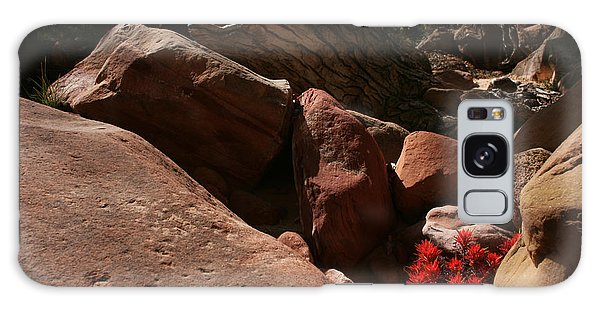 Desert Paintbrush Zion National Park Galaxy Case