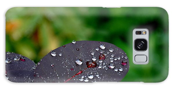 Dew Drops On Smoke Tree Leaves Galaxy Case by Tanya  Searcy