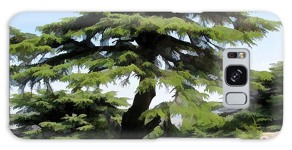 Do-00511 Cedar Forest Galaxy Case by Digital Oil
