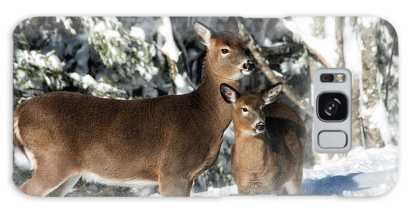 Doe A Deer Galaxy Case