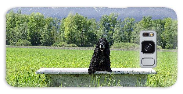 Dog In Bathtub Galaxy Case