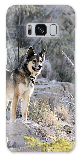 Dog In The Mountains Galaxy Case by Marlo Horne