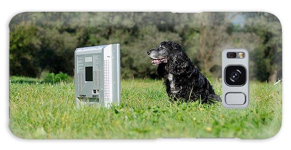 Dog Watching Tv Galaxy Case