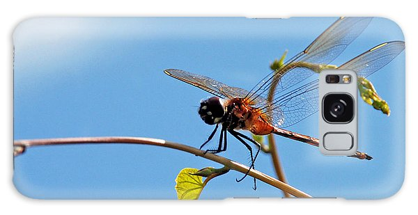 Dragonfly On A Vine Galaxy Case by Kay Lovingood