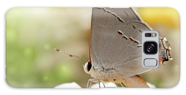 Dreamy Hairstreak Butterfly Galaxy Case