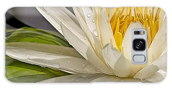 Droplets On The Lily Galaxy Case by Anne Rodkin