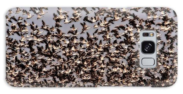 Duck Wall Galaxy Case