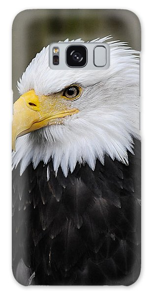 Eagle In Ketchikan Alaska 1371 Galaxy Case