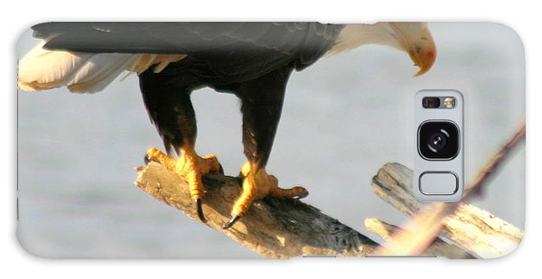 Eagle On His Perch Galaxy Case by Kym Backland