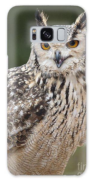 Eagle Owl II Galaxy Case by Chris Dutton