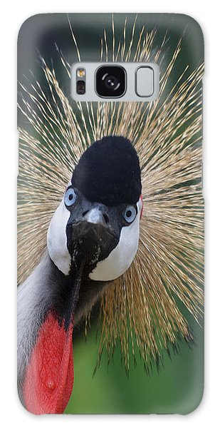 East African Crowned Crane Galaxy Case