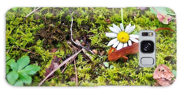 Newts Galaxy S8 Case - Eastern Newt Juvenile 3 by Douglas Barnett