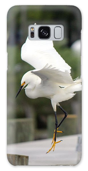 Egret Ballet Galaxy Case