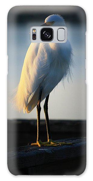 Egret Galaxy Case