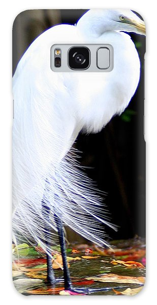 Elegant Egret At Water's Edge Galaxy Case