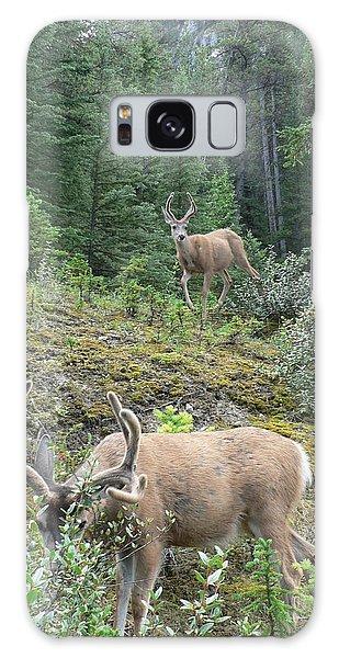 Elegant Elk Galaxy Case