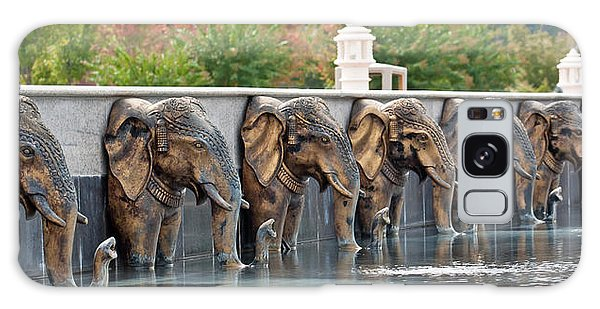 Elephants Of The Mandir Galaxy Case