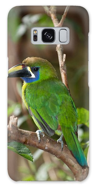 Emerald Toucanet At La Paz Waterfall Gardens Galaxy Case