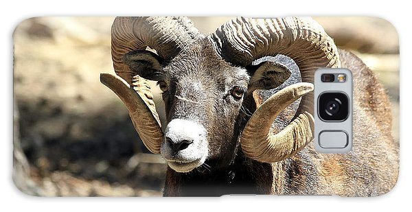 European Big Horn - Mouflon Ram Galaxy Case