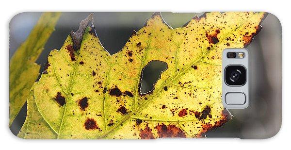 Face Of A Leaf Galaxy Case