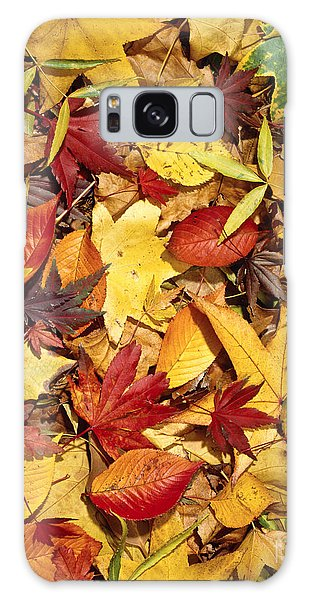 Fall  Autumn Leaves Galaxy Case