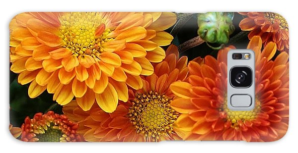 Fall Colors Galaxy Case by Bruce Bley