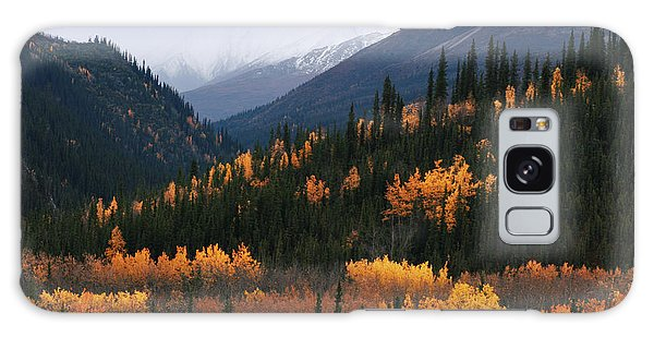 Fall Denali National Park Galaxy Case