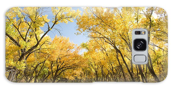 Fall Leaves In New Mexico Galaxy Case