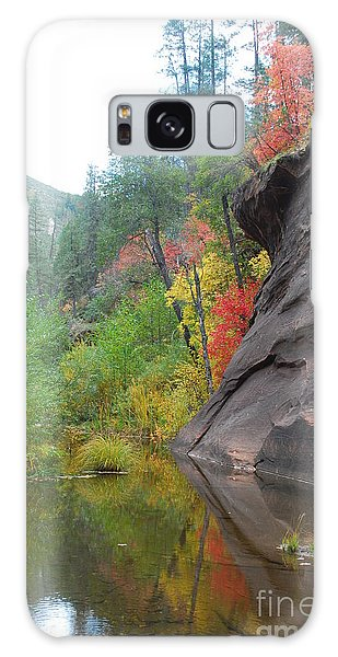 Fall Peeks From Behind The Rocks Galaxy Case by Heather Kirk