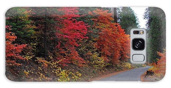 Fall's Splendor Galaxy Case by Lynn Bauer