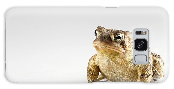 Fat Toad Galaxy Case by John Crothers