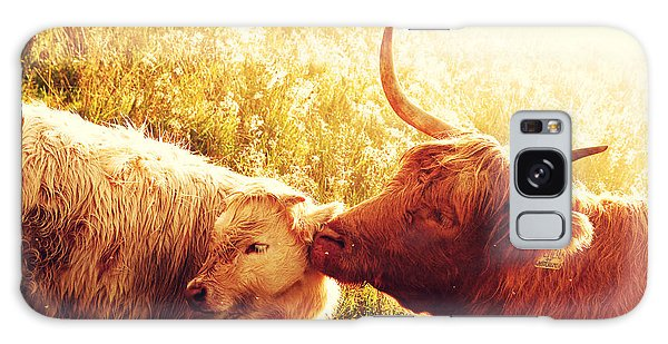 Fenella With Her Daughter. Highland Cows. Scotland Galaxy Case