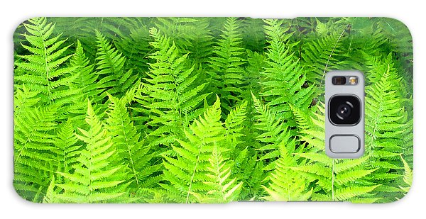 Ferns Galore Filtered Galaxy Case