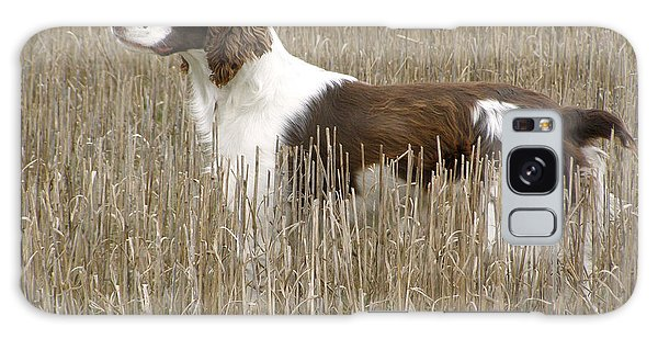 Field Bred Springer Spaniel Galaxy Case