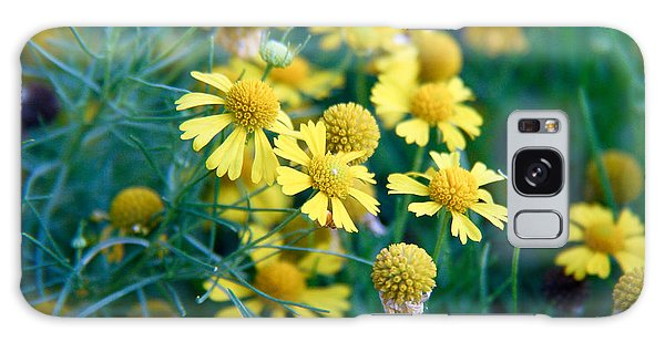 Field Of  Yellow Daisies  Galaxy Case