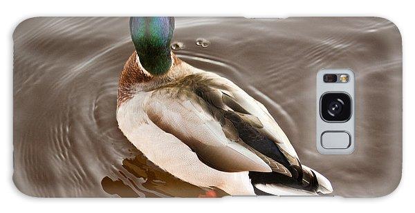 Fine Feathered Mallard Duck Galaxy Case