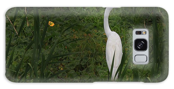 Florida Egret Galaxy Case
