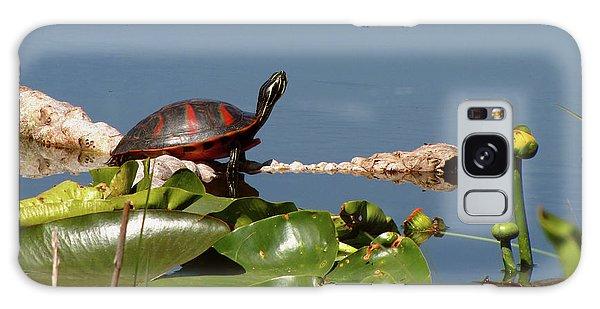 Florida Redbelly Turtle Galaxy Case
