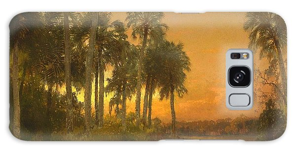 Florida Sunset Galaxy Case by Pg Reproductions