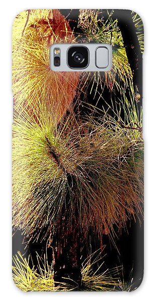 Florida Tree Galaxy Case