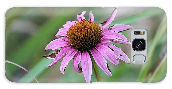 Flower At Waterfall Glen Forest Preserve Galaxy Case