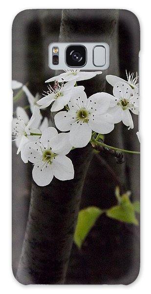 Flowering Tree 4 Galaxy Case by Gerald Strine