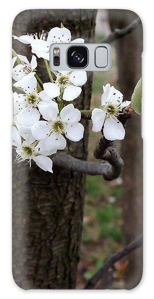 Floweringtree 2 Galaxy Case by Gerald Strine