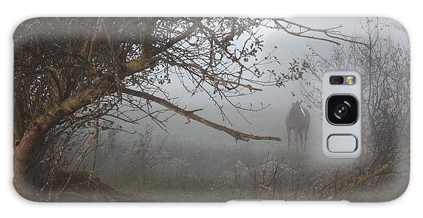 Foggy Horse Galaxy Case