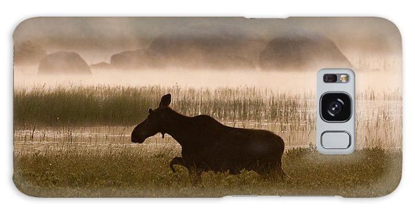 Foggy Stroll Galaxy Case by Brent L Ander