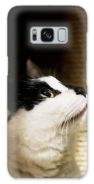 For Me Galaxy Case by JM Photography