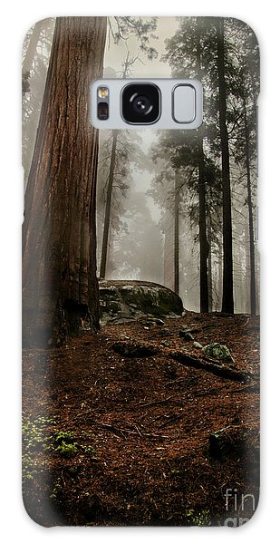 Forest Floor And Fog Galaxy Case
