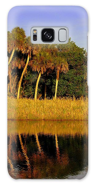 Four Palms Reflecting In Myakka Lake Galaxy Case