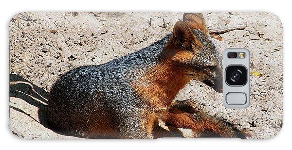 Foxie Galaxy Case by Debra Forand