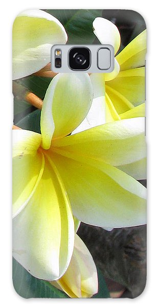 Frangipani Up Close Galaxy Case